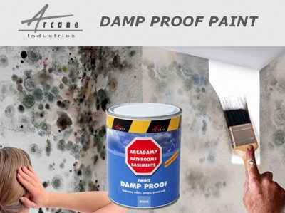 paint to stop damp